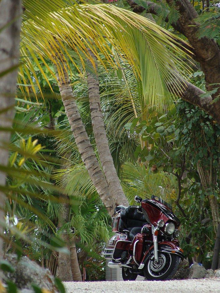 motorcycle beauty shot