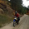 Biers__brauts_and_mot+_r_bikes__11_