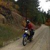 Biers__brauts_and_mot+_r_bikes__11_