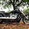 Harley_vrod_bike_review_beauty_02