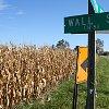 Wallstreetcorn