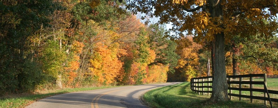 Five autumn hazards to watch for