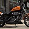 2015-harley-davidson-883-roadster-sense-and-simplicity-photo-gallery_1