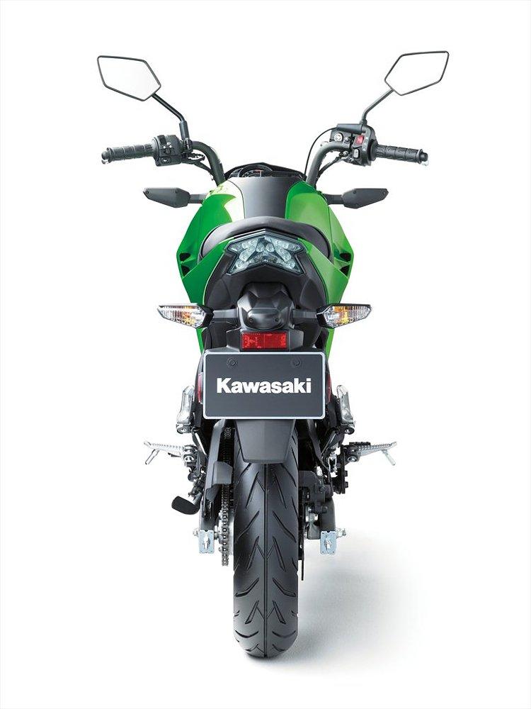 Kawasaki Z125 rear