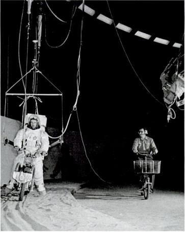 testing a lunar minicycle