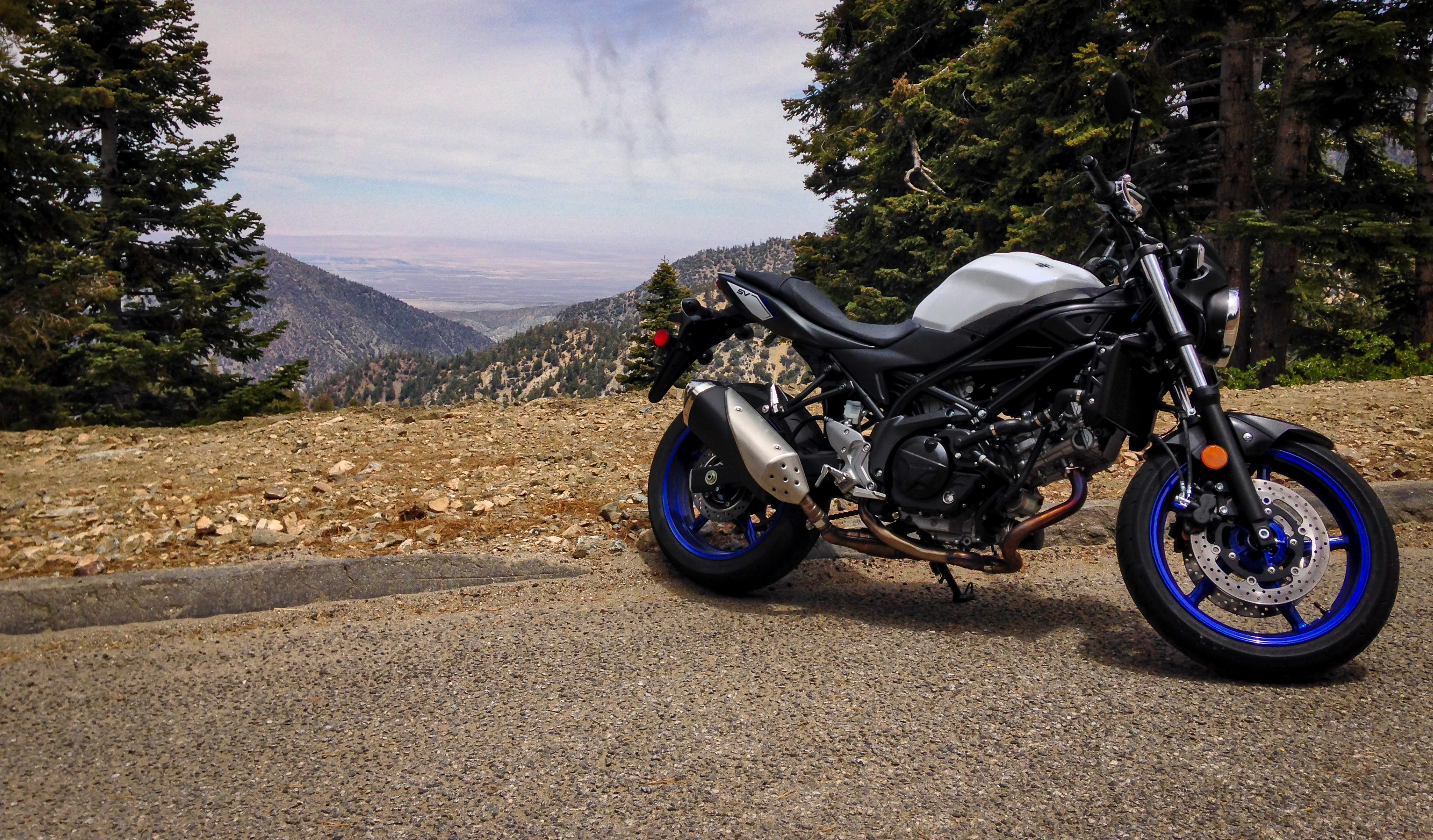 2017 Suzuki SV650 first ride review - RevZilla