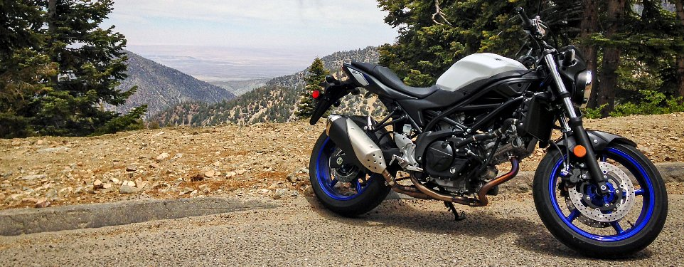 Enjoyable 2017 Suzuki Sv650 First Ride Review Revzilla Pdpeps Interior Chair Design Pdpepsorg