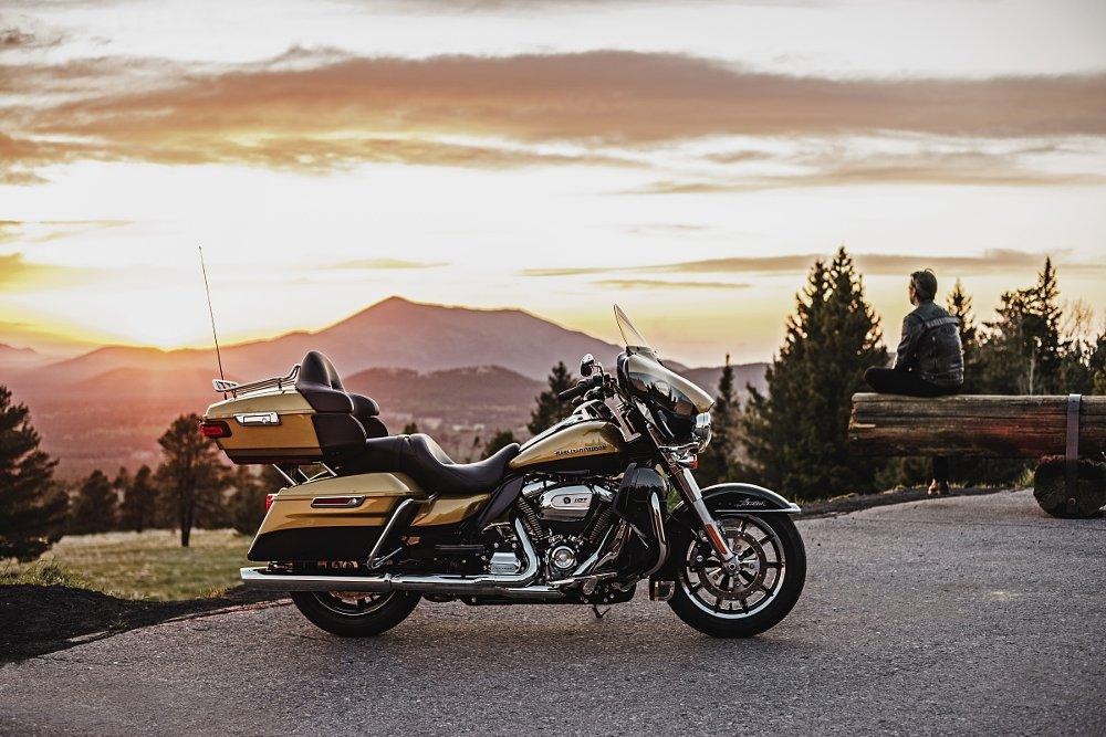 New Harley dresser