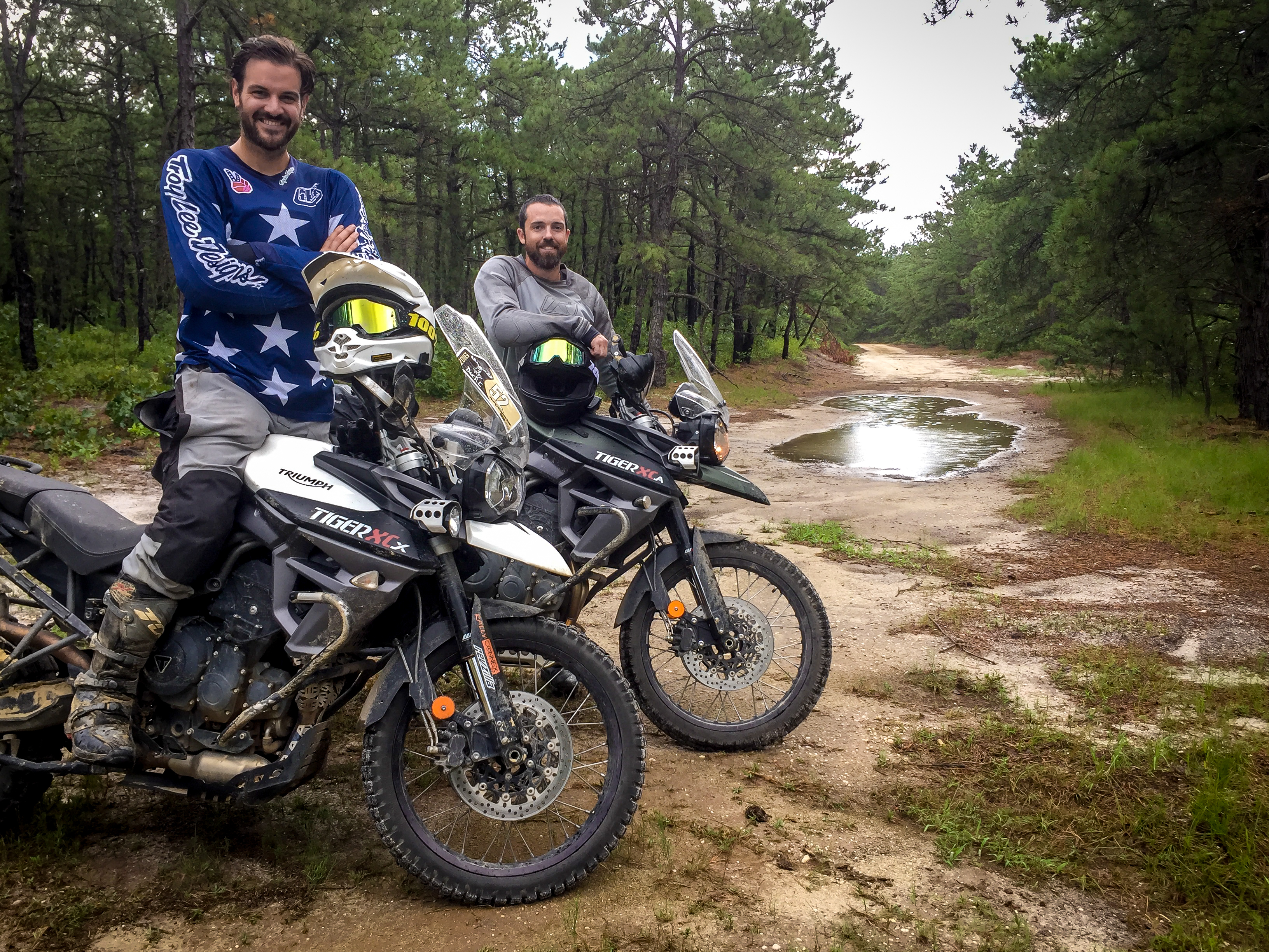 A Year Of The Tiger Long Term Abuse Of A Triumph Tiger 800 Xcx