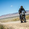 Africa_twin_wing