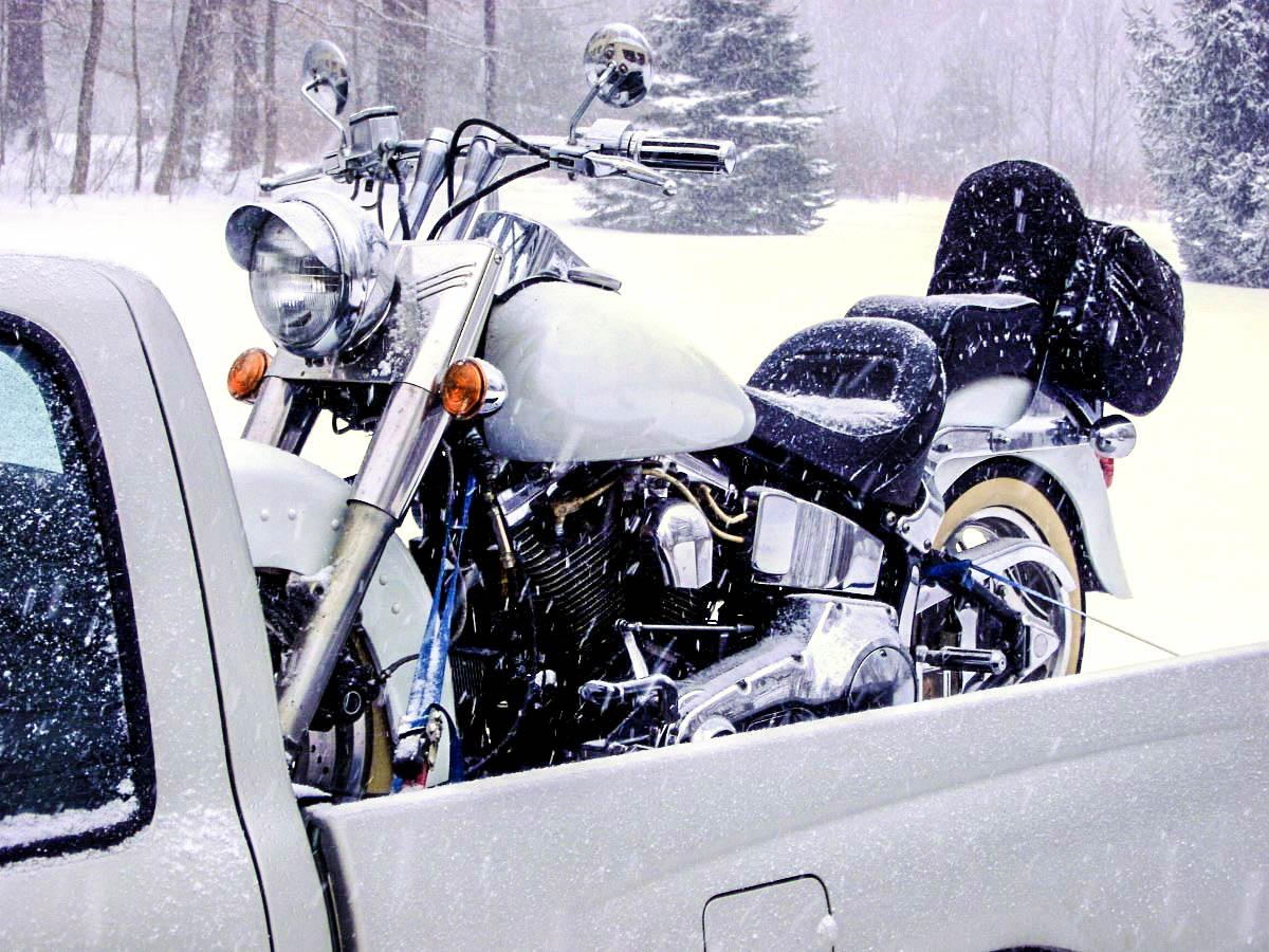 Black people speed hookup raleigh nc craigslist motorcycles houston