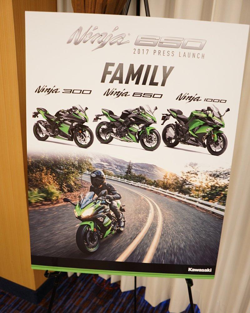 Ninja family poster