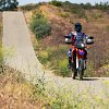 Crf250l_rally_ride