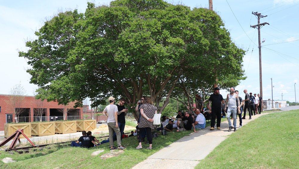 shade tree socializing