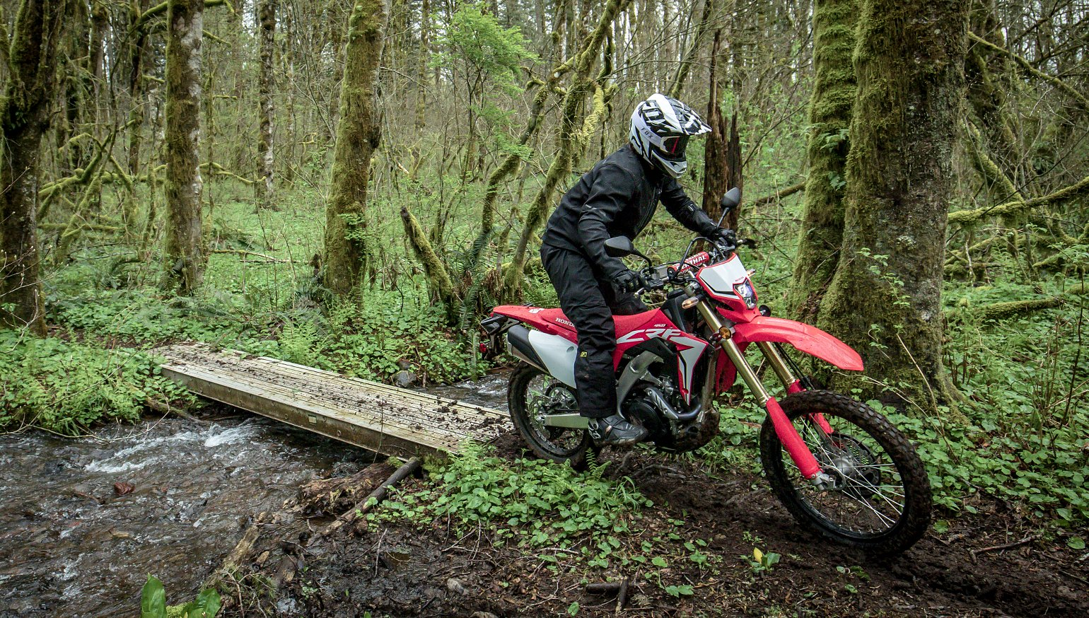 Honda Crf L Hero on Crf 450 Dual Sport