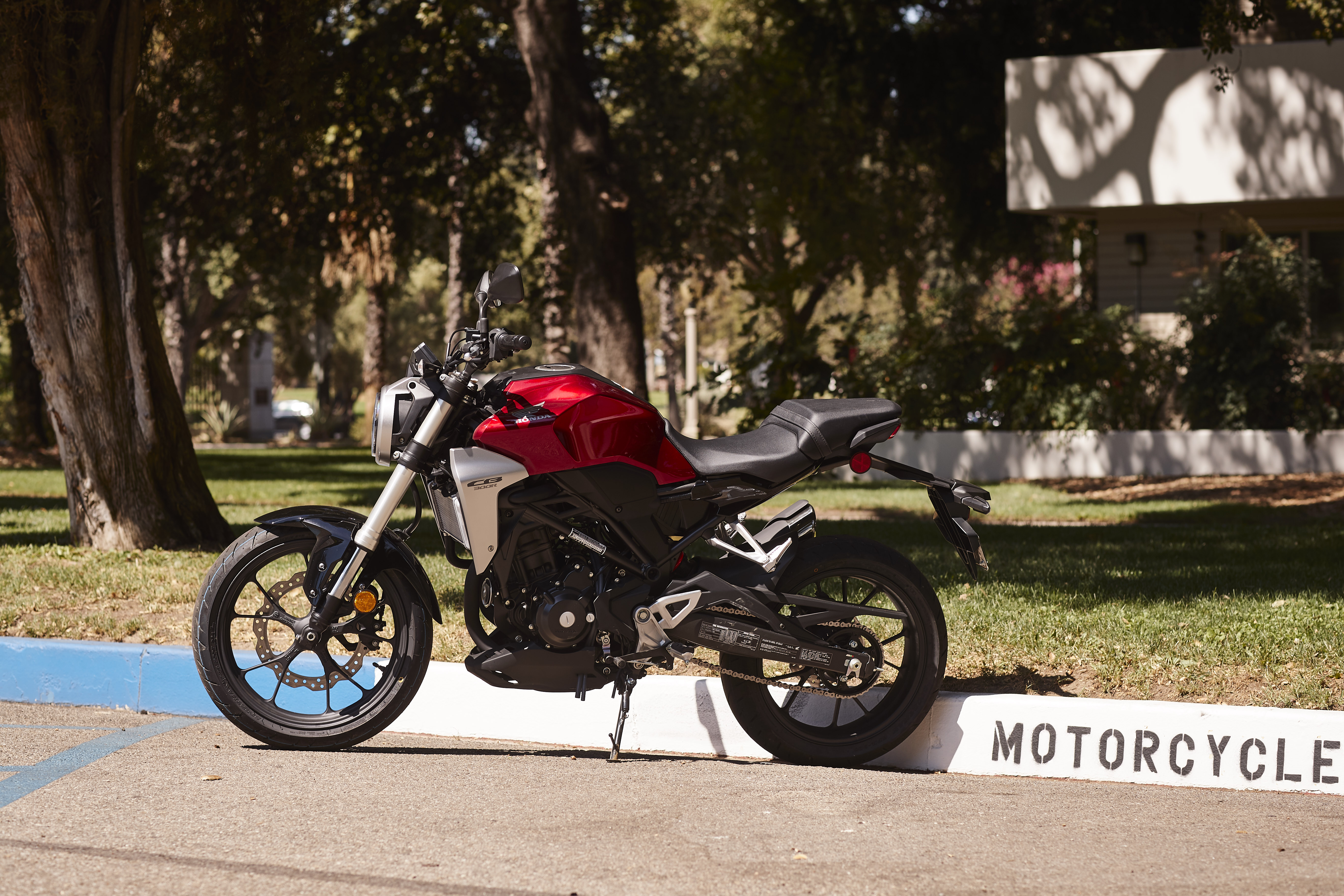 2019 Honda CB300R first ride review - RevZilla