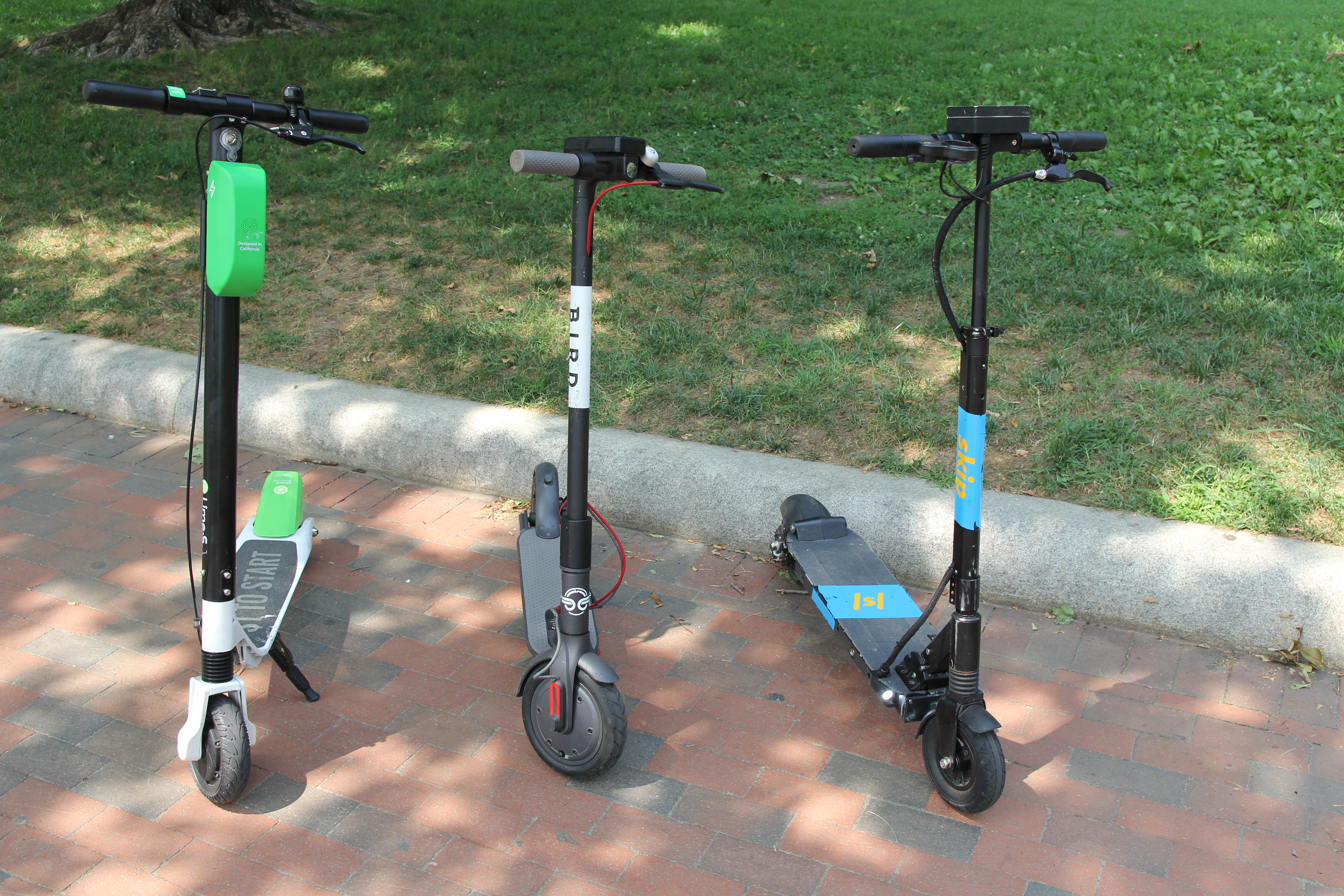 Dockless electric scooters: fad, friend, or foe? - RevZilla