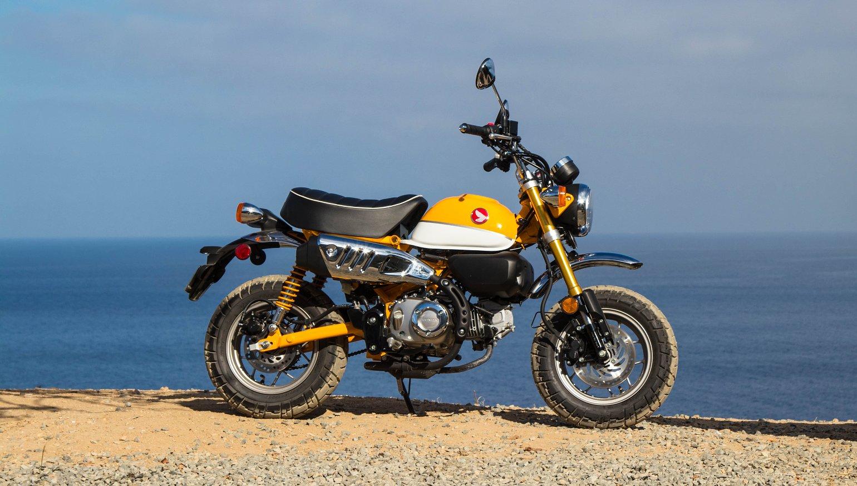 2019 Honda Monkey First Ride Review Revzilla