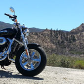 Sportster in the desert