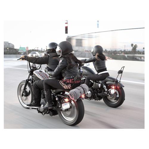 Burly Tall Sissy Bar For Harley Sportster 2004 2018