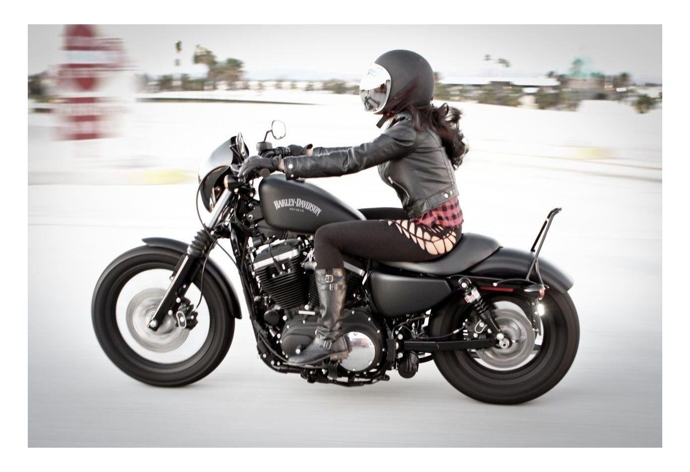 Burly Short Sissy Bar For Harley Sportster 2004 2019