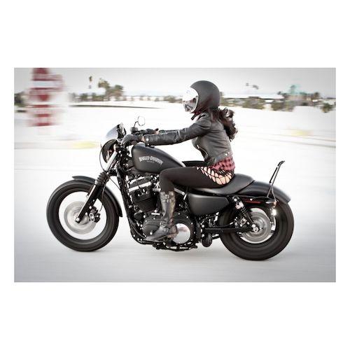 Burly Short Sissy Bar For Harley Sportster 2004 2017