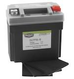Bike Master Lithium Ion Battery DLFP-9L-B