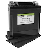 Bike Master Lithium Ion Battery DLFP-12AL-A
