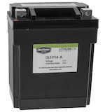 Bike Master Lithium Ion Battery DLFP-14-A