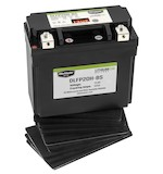 Bike Master Lithium Ion Battery DLFP-20H-BS