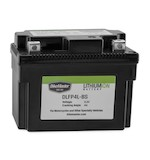 Bike Master Lithium Ion Battery DLFP-4L-BS