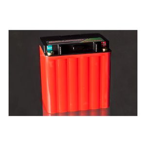 Ballistic Performance EVO3 EVX30 Battery
