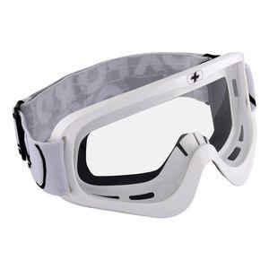 Oxford Fury Goggles