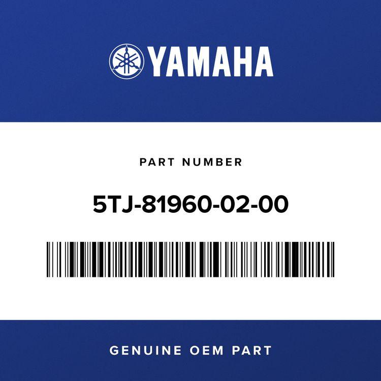 Yamaha RECTIFIER & REGULATOR ASSY 5TJ-81960-02-00