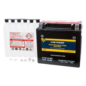 Fire Power Maintenance Free Battery