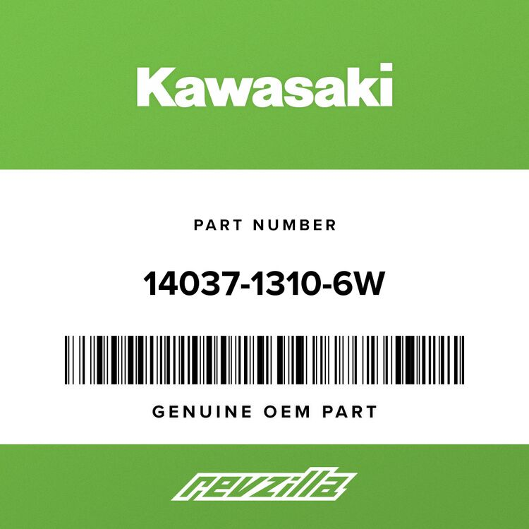 Kawasaki SCREEN 14037-1310-6W