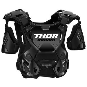 Thor Youth Guardian Roost Protector