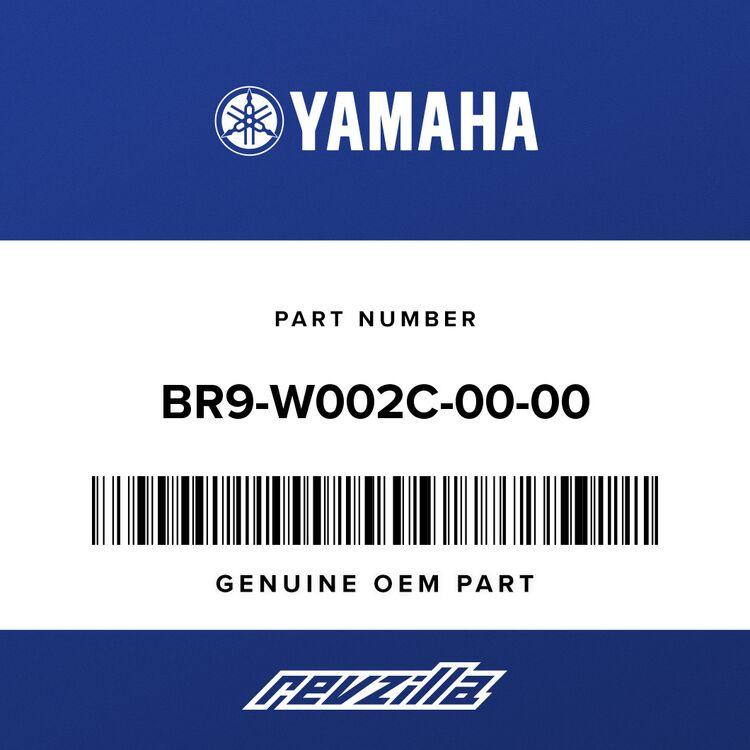 Yamaha SWING ARM PIVOT BEAR BR9-W002C-00-00