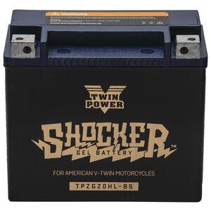 Twin Power Shocker Gel Battery TPZG20HL-BS