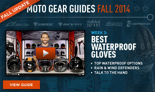 Gloves Guide Fall